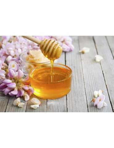 Miele di castagno bio 500g Apicoltura Più
