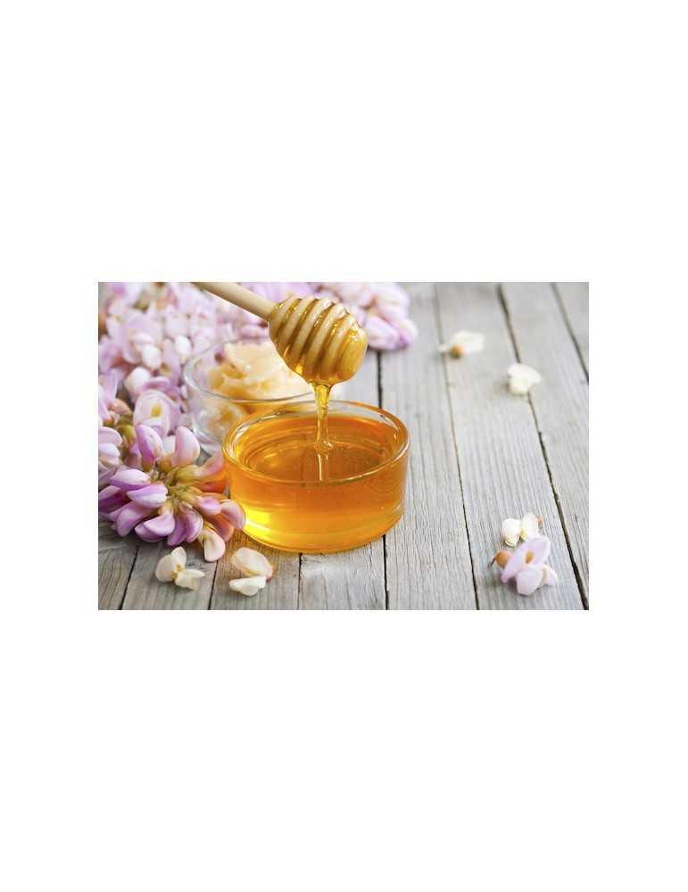 Miele di tiglio 500g Apicoltura Più