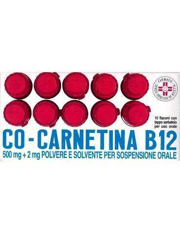 Co-carnetina B12 10 Flaconi 10 ml ALFASIGMA SpA021852013 ALFASIGMA SpA