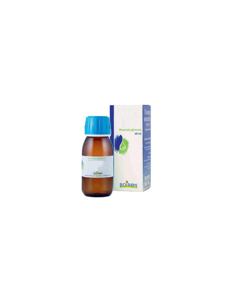 Boiron Tilia Tomentosa Gemme 60ml medicinale omeopatico 800028110